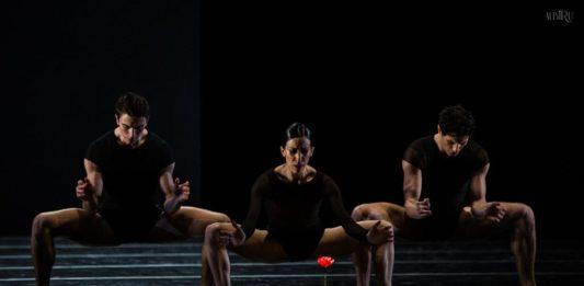 Juan José Carazo, Cristina Casa y Alessandro Riga en Remansos, de Duato. Foto-Alba Muriel La Compañía Nacional de Danza y su camino