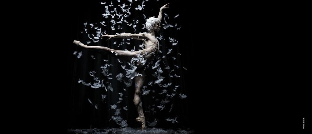 Perspectives, nueva creación del Ballet de Barcelona para el Festival Castell de Peralada